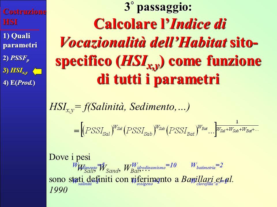 Costruzione HSI1) Quali parametri. 2) PSSFp. 3) HSIx,y. 4) E(Prod.)