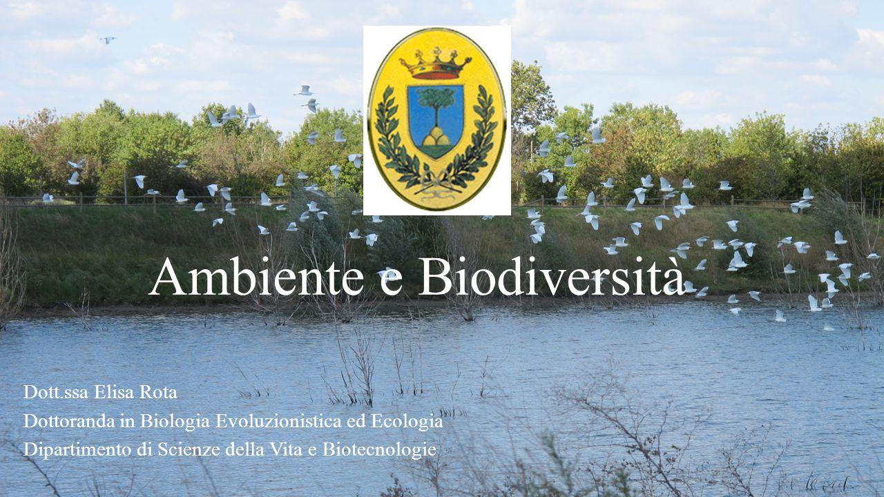 Ambiente e Biodiversità