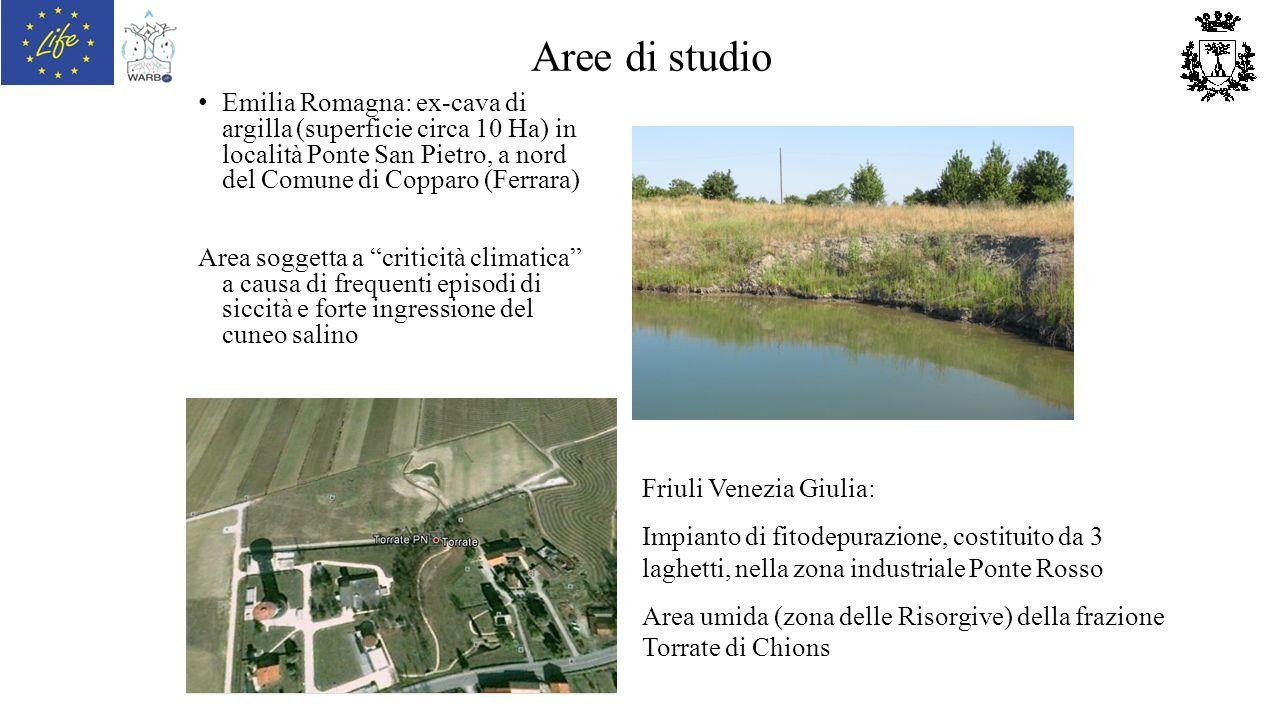 Aree di studio Emilia Romagna: ex-cava di argilla (superficie circa 10 Ha) in località Ponte San Pietro, a nord del Comune di Copparo (Ferrara)