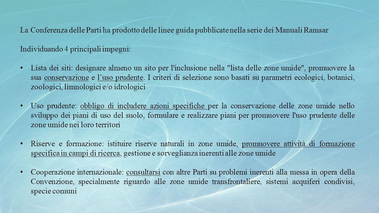 La Conferenza delle Parti ha prodotto delle linee guida pubblicate nella serie dei Manuali Ramsar