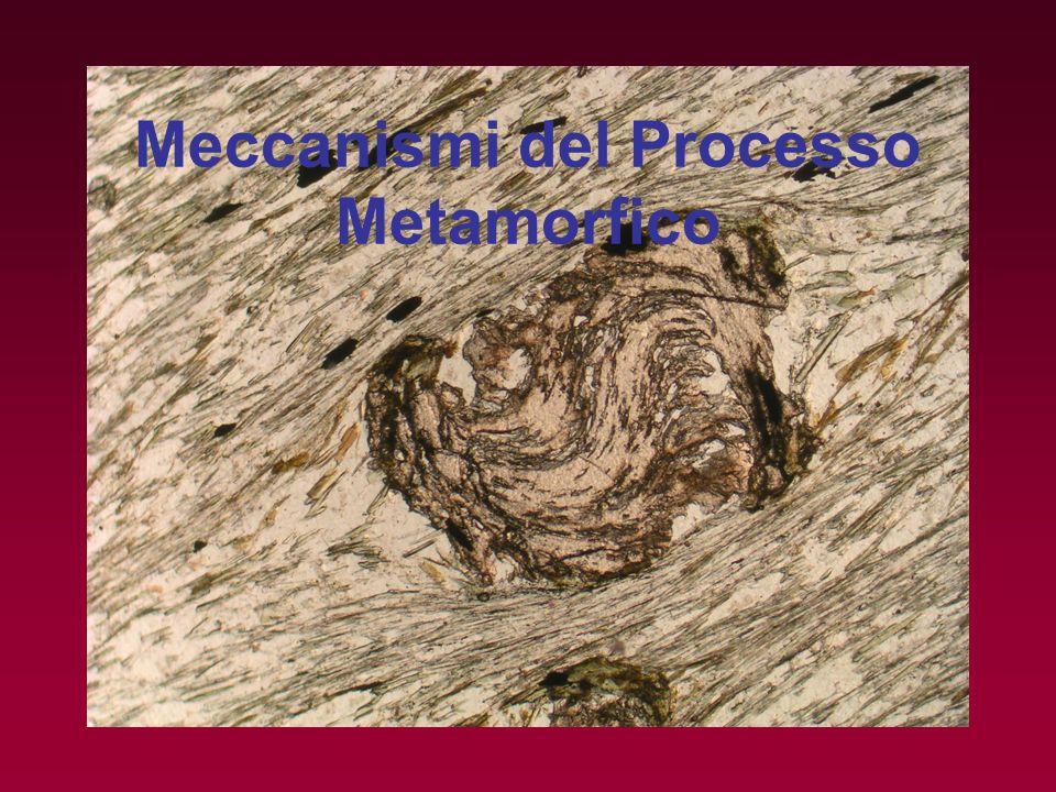 Meccanismi del Processo Metamorfico