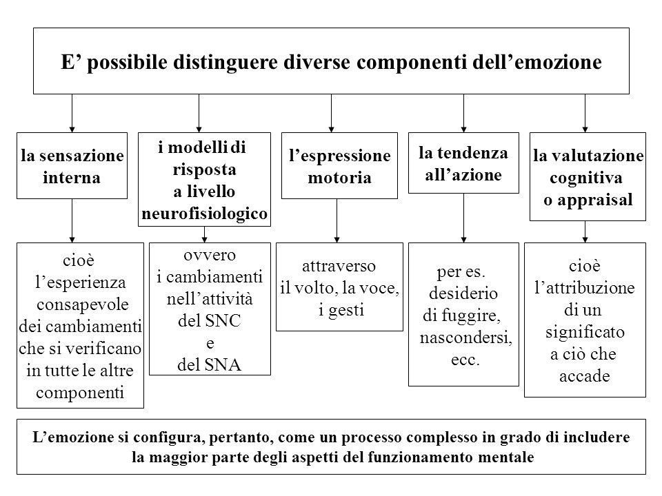 E' possibile distinguere diverse componenti dell'emozione