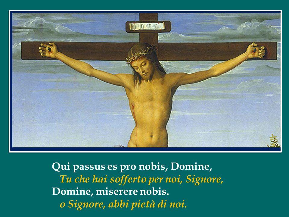 Qui passus es pro nobis, Domine,