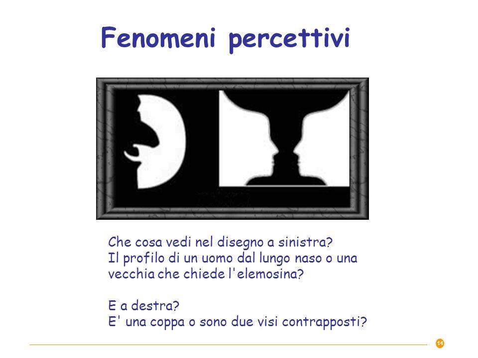 Fenomeni percettivi Che cosa vedi nel disegno a sinistra Il profilo di un uomo dal lungo naso o una vecchia che chiede l elemosina