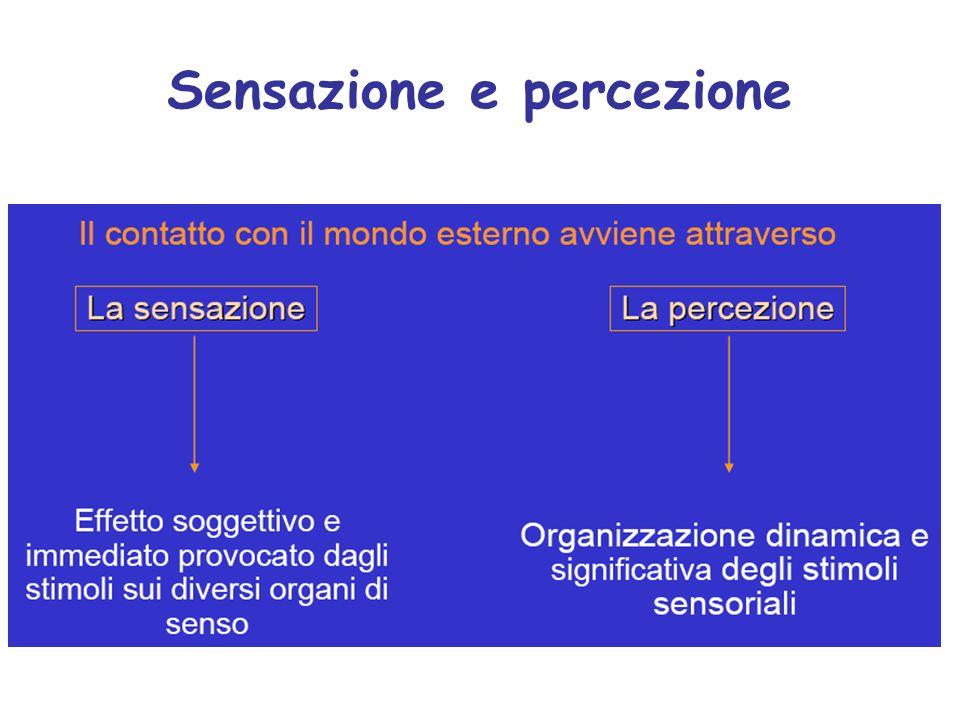 Sensazione e percezione