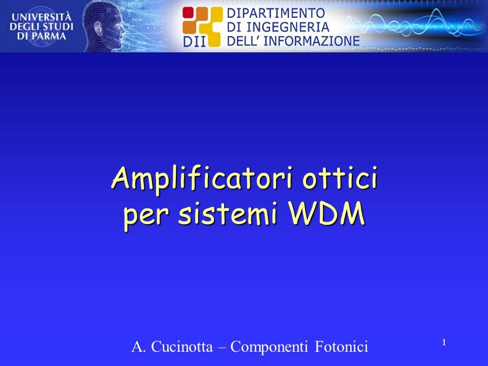 Amplificatori ottici per sistemi WDM
