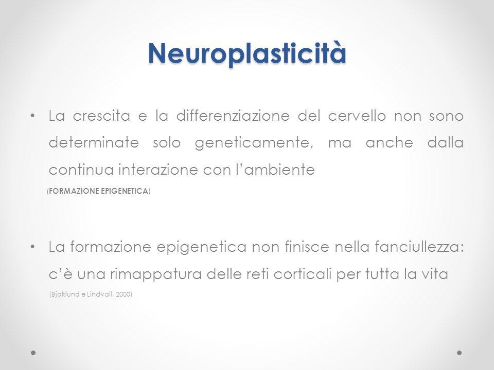 Neuroplasticità