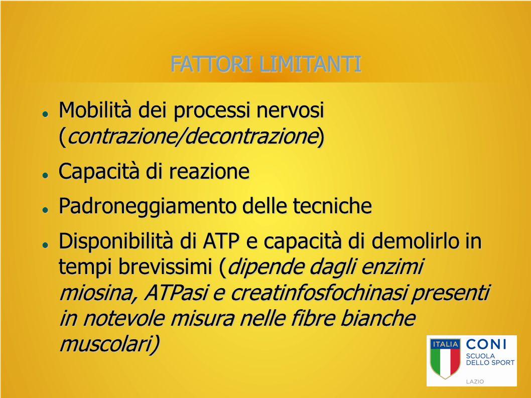 FATTORI LIMITANTI Mobilità dei processi nervosi (contrazione/decontrazione) Capacità di reazione.