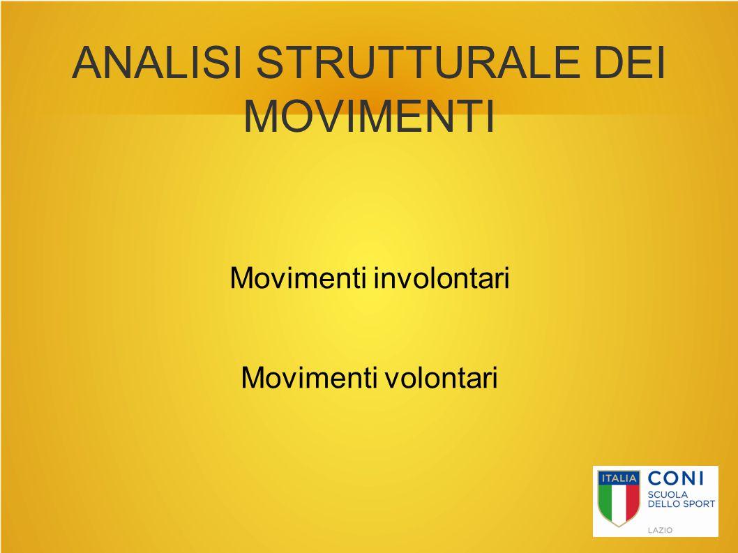 ANALISI STRUTTURALE DEI MOVIMENTI
