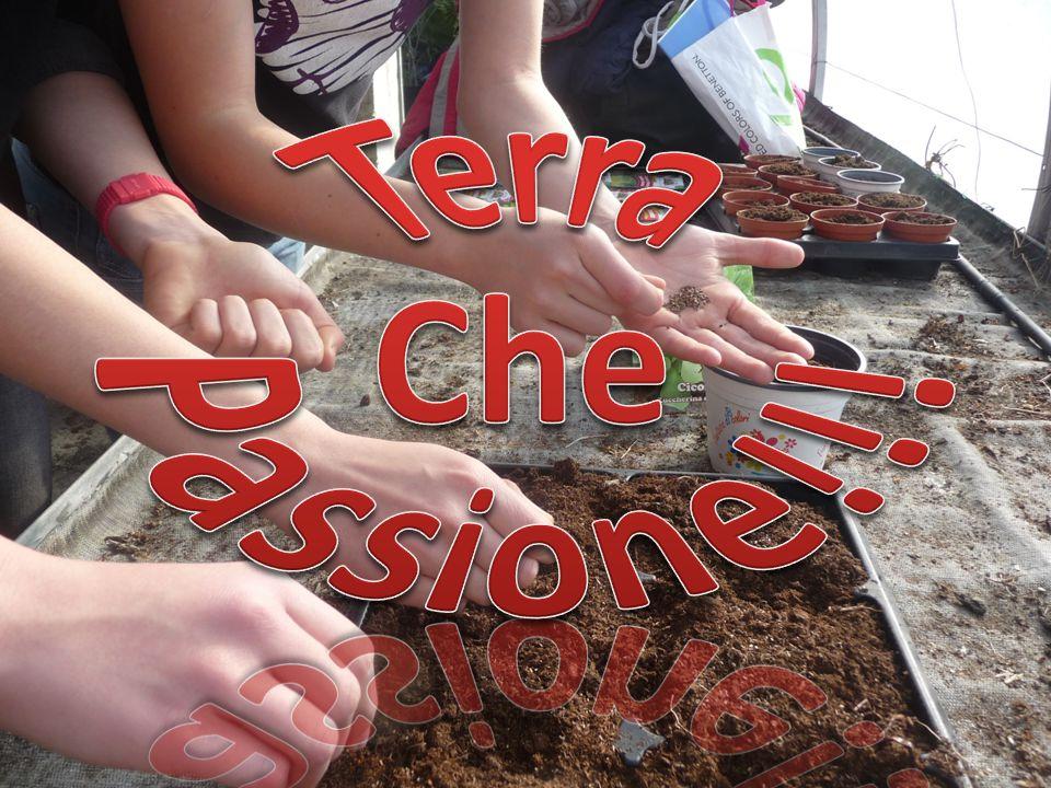 Terra Che Passione!!!