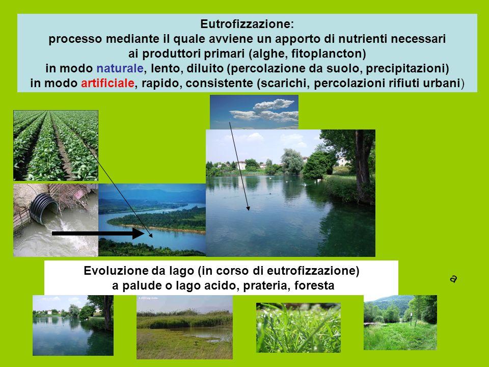 Eutrofizzazione: processo mediante il quale avviene un apporto di nutrienti necessari ai produttori primari (alghe, fitoplancton) in modo naturale, lento, diluito (percolazione da suolo, precipitazioni) in modo artificiale, rapido, consistente (scarichi, percolazioni rifiuti urbani)