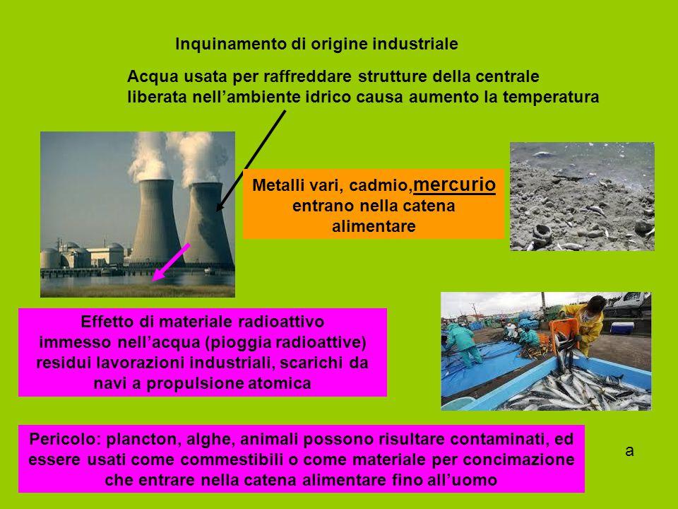 Metalli vari, cadmio,mercurio entrano nella catena alimentare