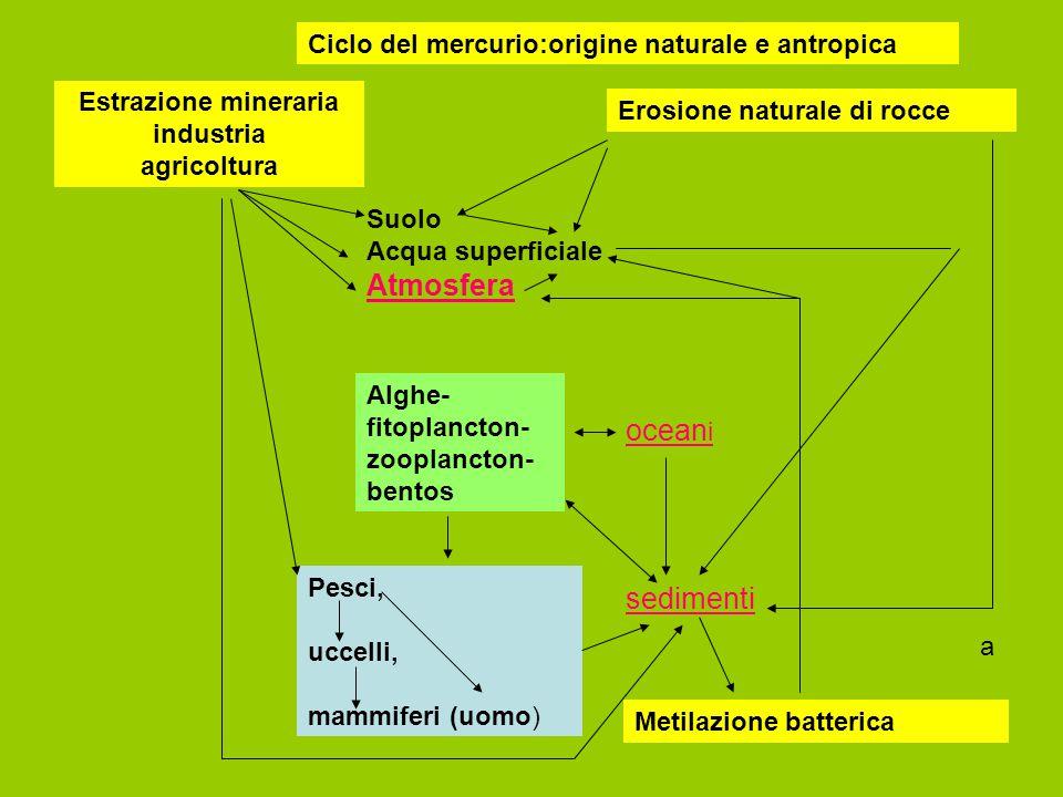 Estrazione mineraria industria agricoltura
