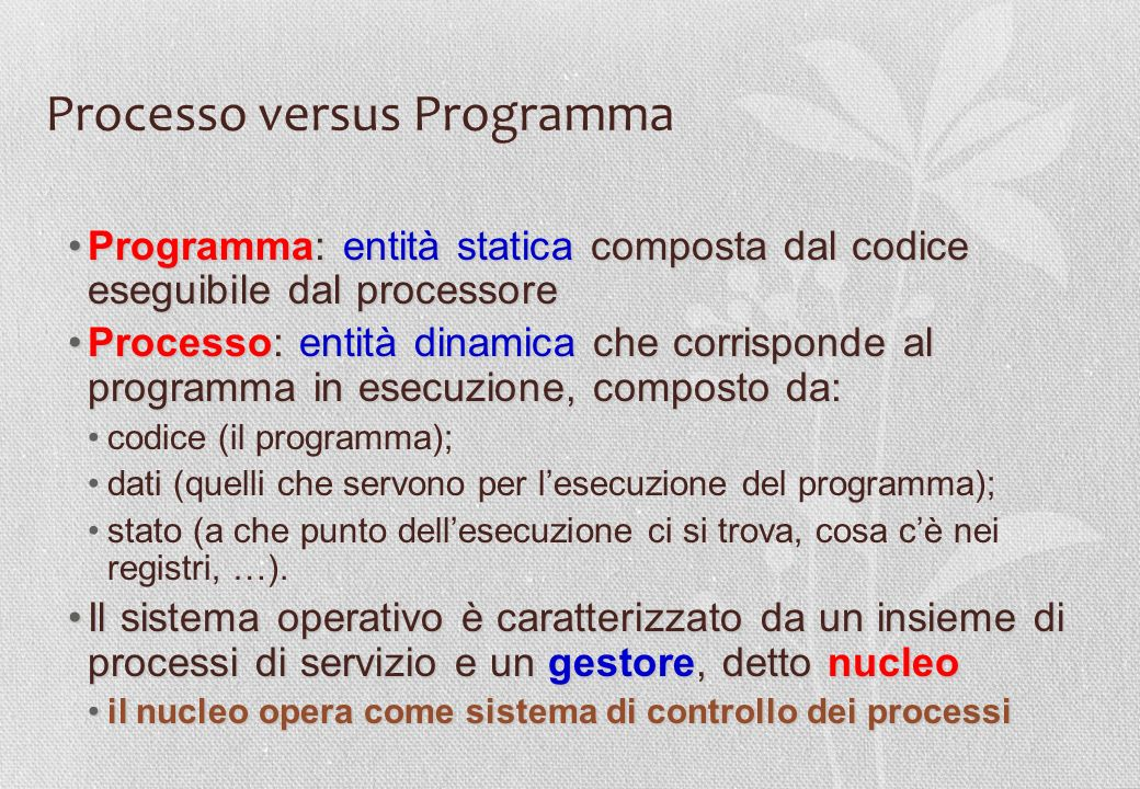 Processo versus Programma