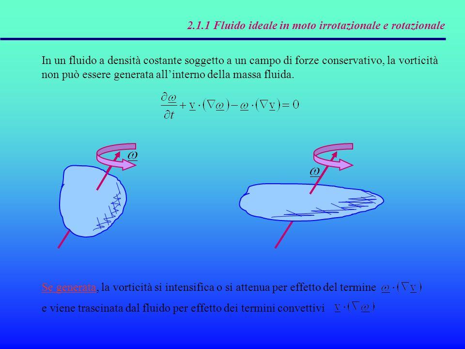 2.1.1 Fluido ideale in moto irrotazionale e rotazionale