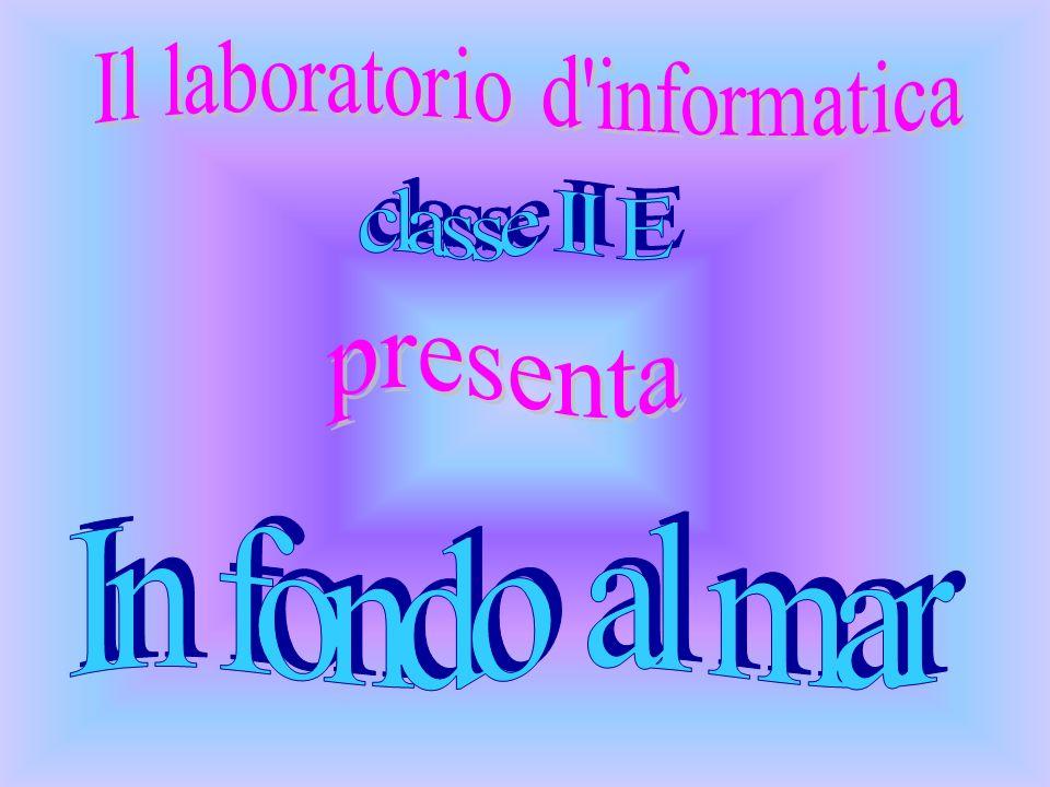 Il laboratorio d informatica