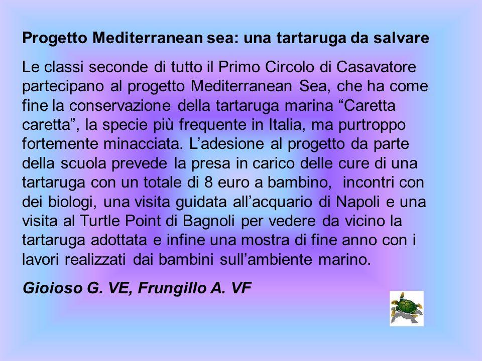 Progetto Mediterranean sea: una tartaruga da salvare