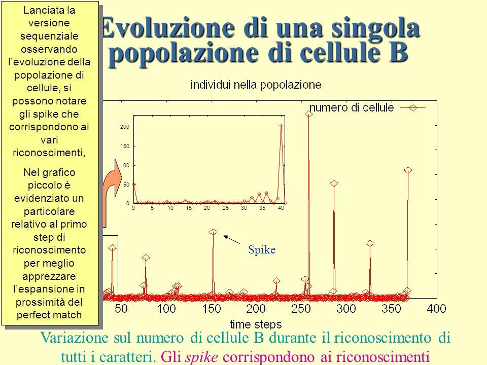 Evoluzione di una singola popolazione di cellule B