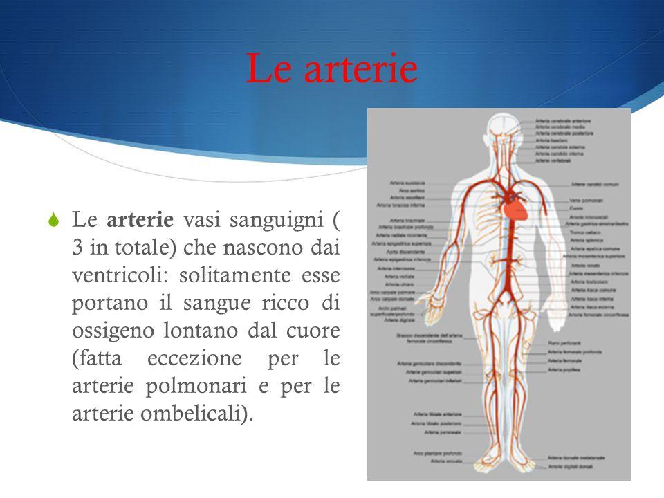 Le arterie