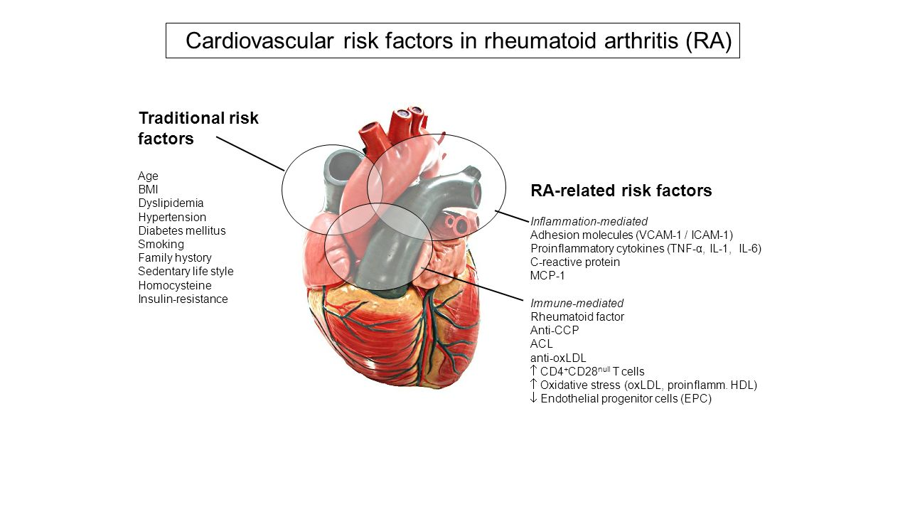 Cardiovascular risk factors in rheumatoid arthritis (RA)