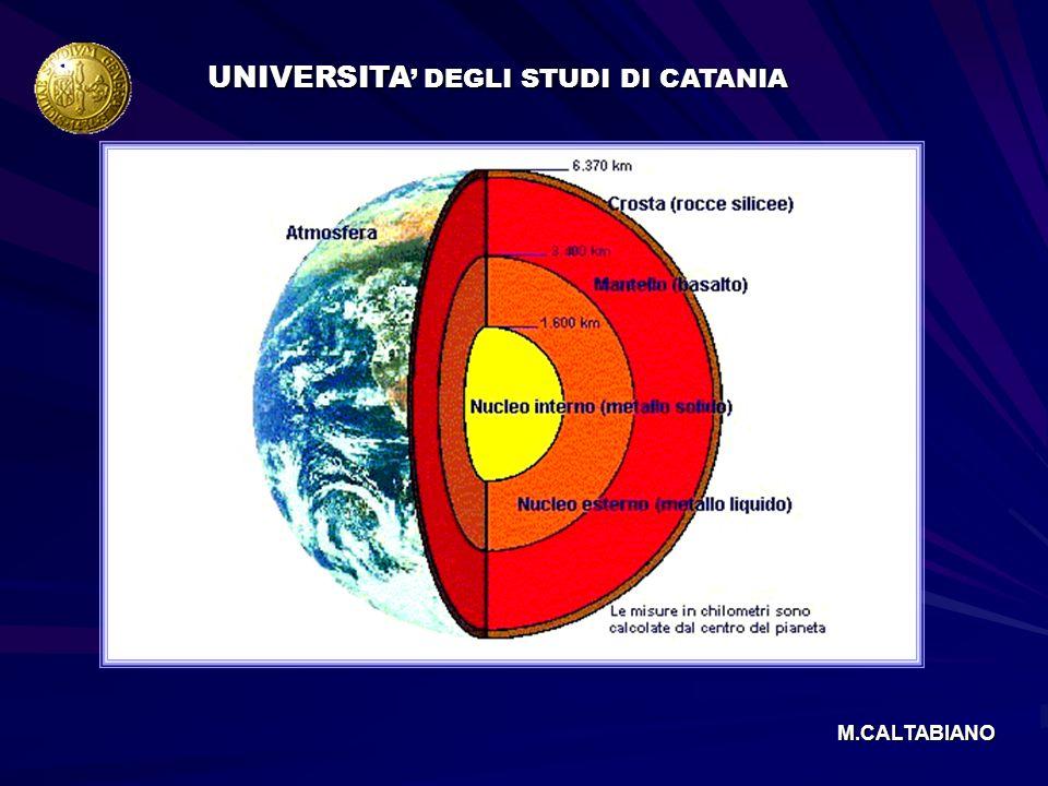 UNIVERSITA' DEGLI STUDI DI CATANIA
