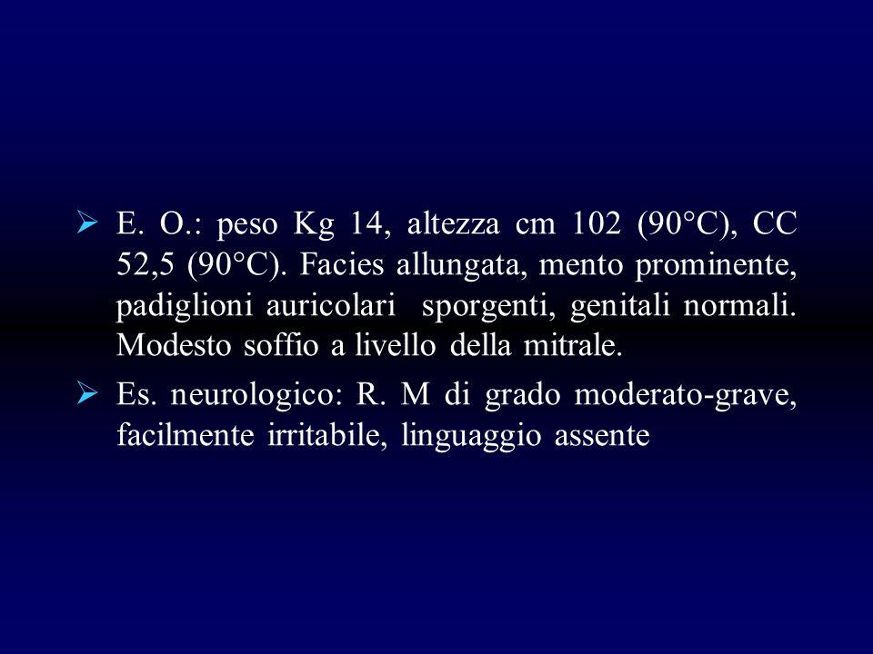 E. O. : peso Kg 14, altezza cm 102 (90°C), CC 52,5 (90°C)