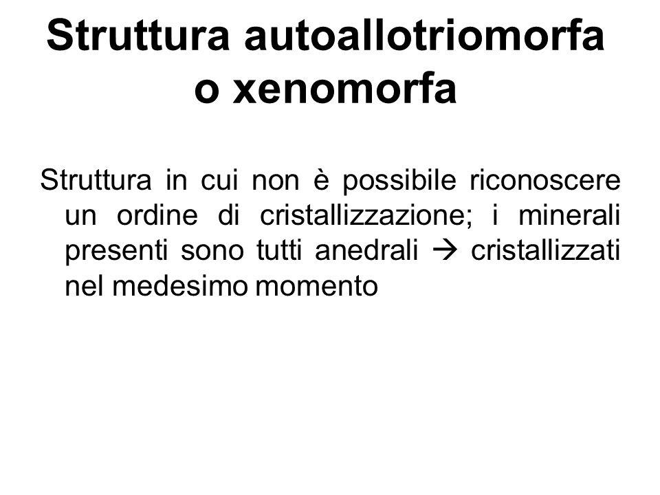 Struttura autoallotriomorfa o xenomorfa