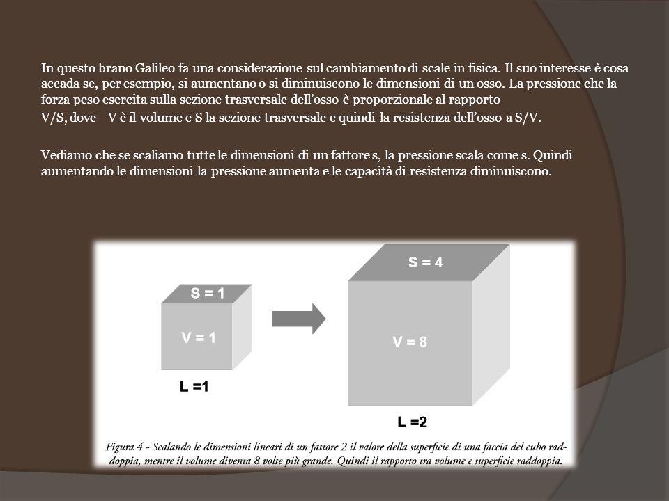 In questo brano Galileo fa una considerazione sul cambiamento di scale in fisica. Il suo interesse è cosa accada se, per esempio, si aumentano o si diminuiscono le dimensioni di un osso. La pressione che la forza peso esercita sulla sezione trasversale dell'osso è proporzionale al rapporto