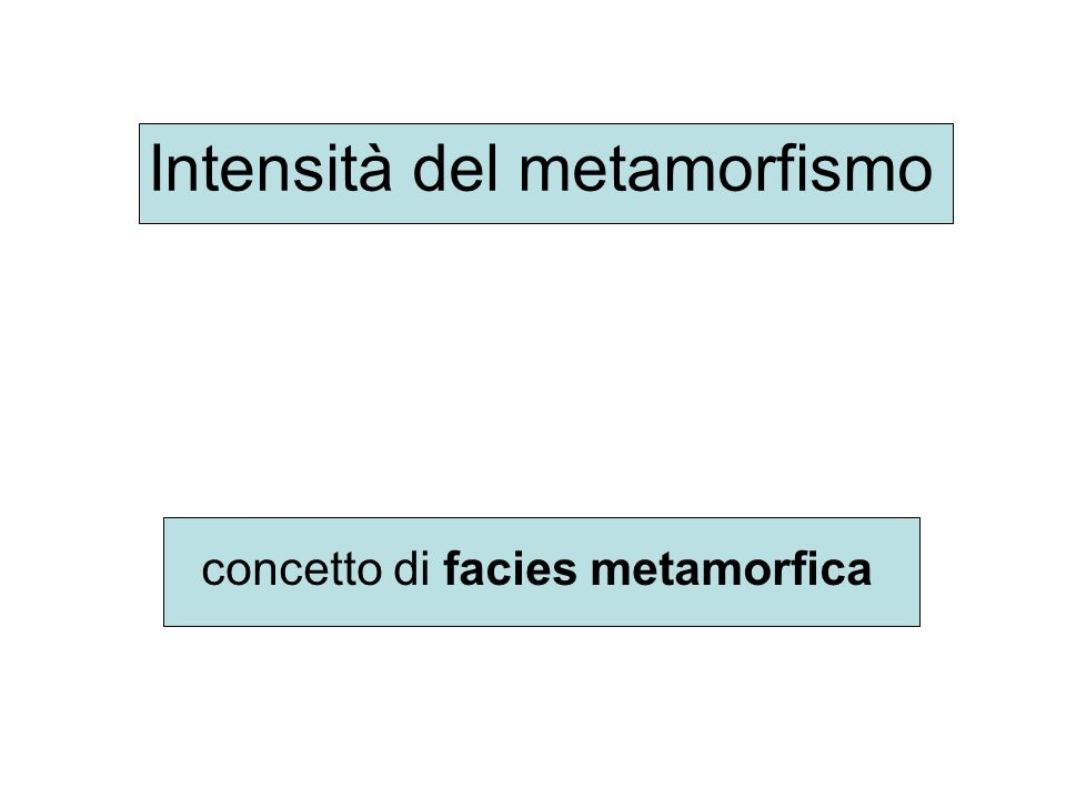Intensità del metamorfismo