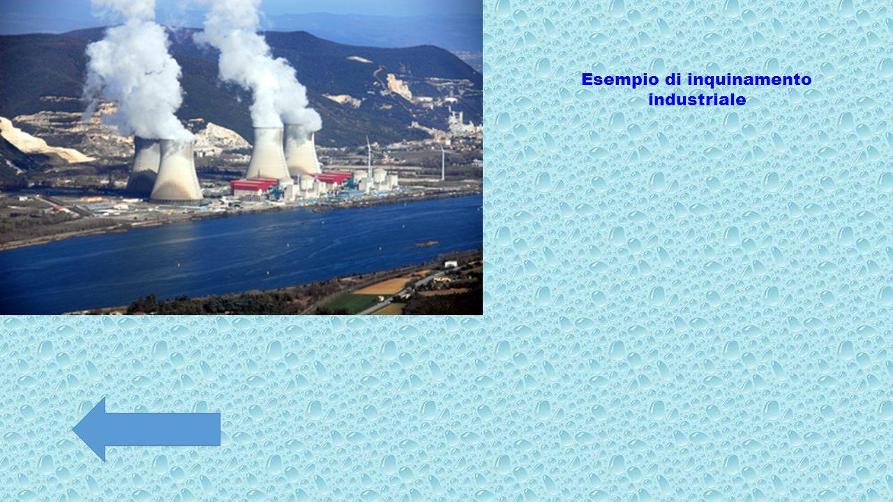 Esempio di inquinamento