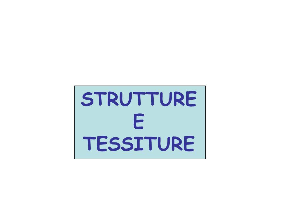 STRUTTURE E TESSITURE