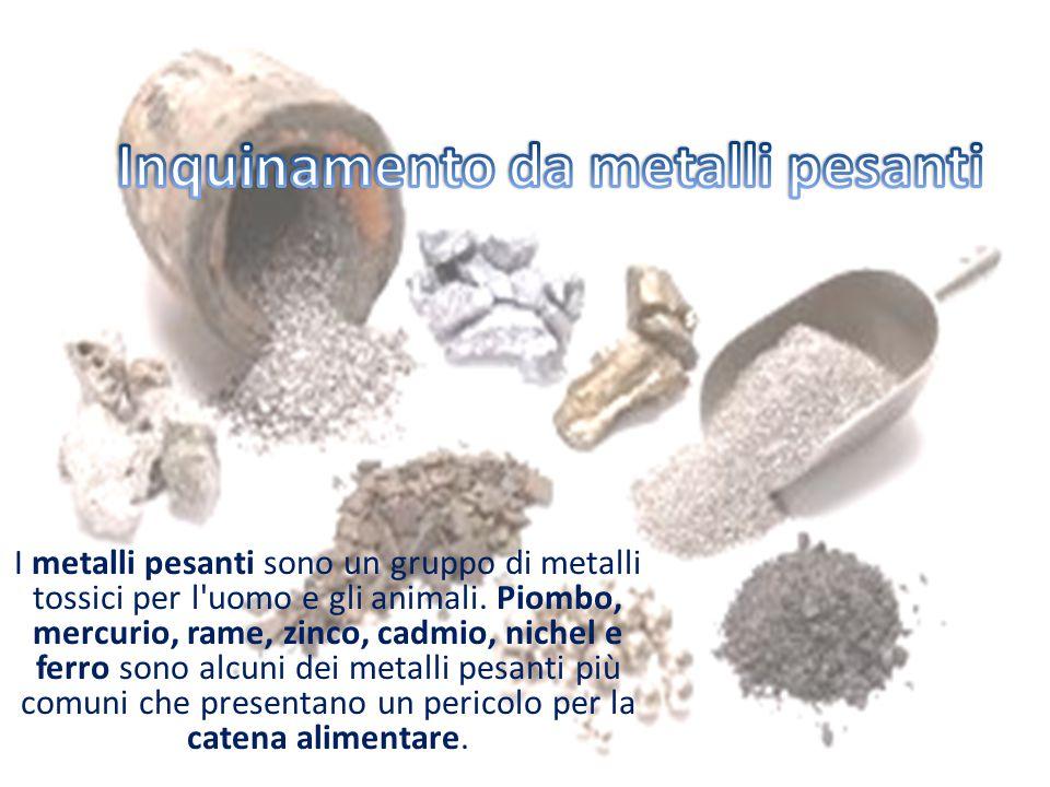 Inquinamento da metalli pesanti