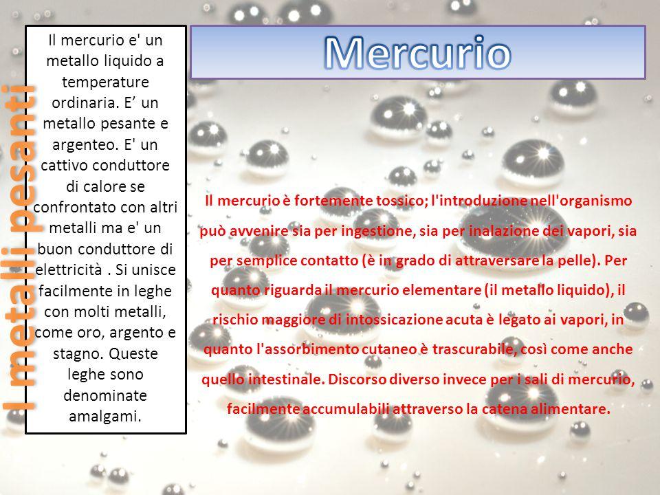 Mercurio I metalli pesanti