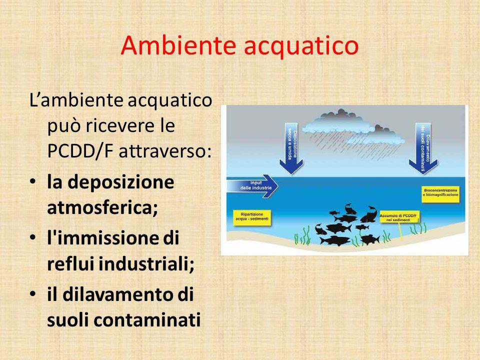 Ambiente acquatico L'ambiente acquatico può ricevere le PCDD/F attraverso: la deposizione atmosferica;