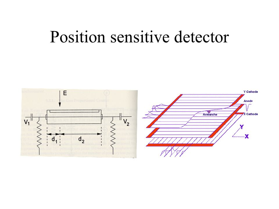 Position sensitive detector