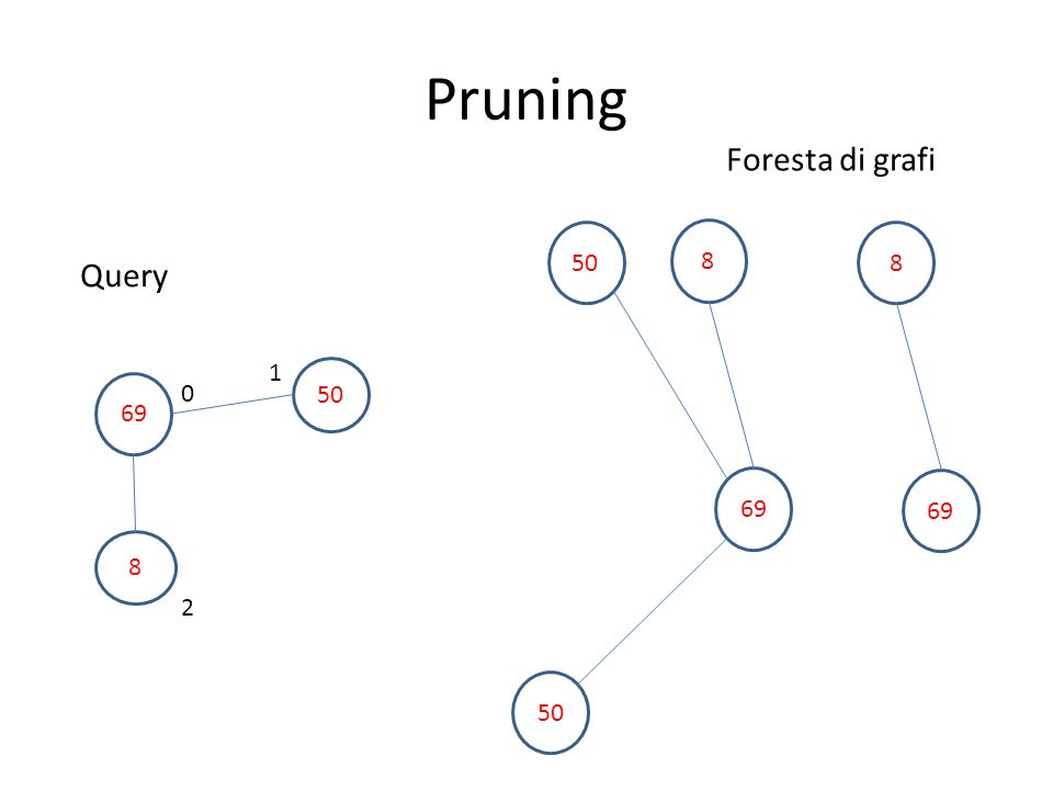 Pruning Foresta di grafi 50 8 8 Query 1 50 69 69 69 8 2 50