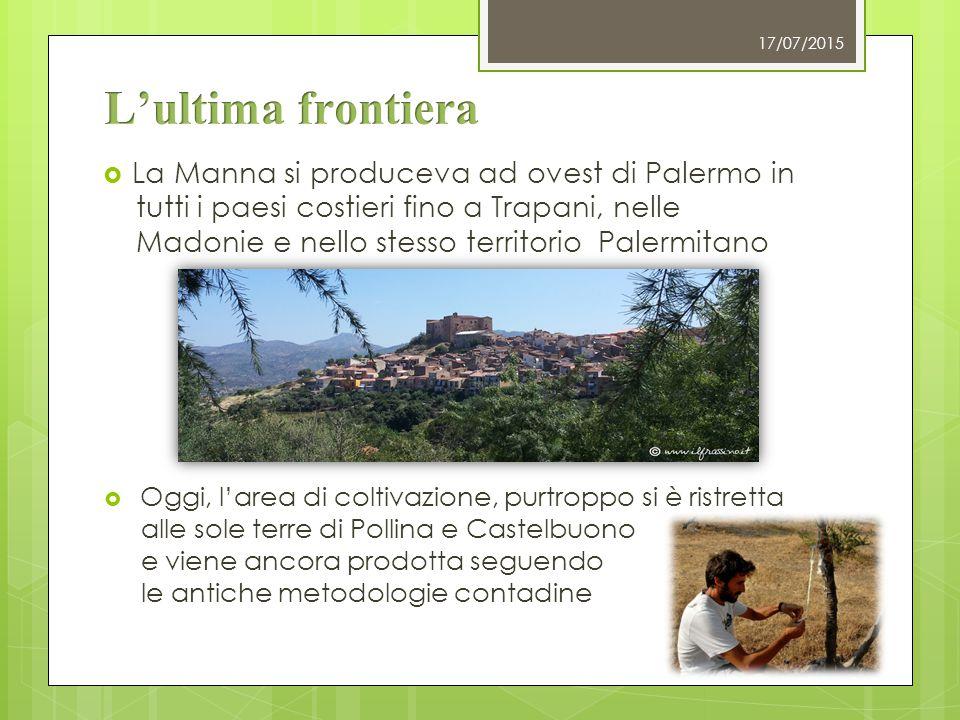 L'ultima frontiera La Manna si produceva ad ovest di Palermo in