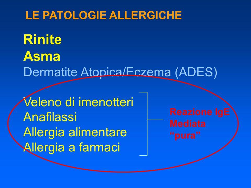 Rinite Asma Dermatite Atopica/Eczema (ADES) Veleno di imenotteri