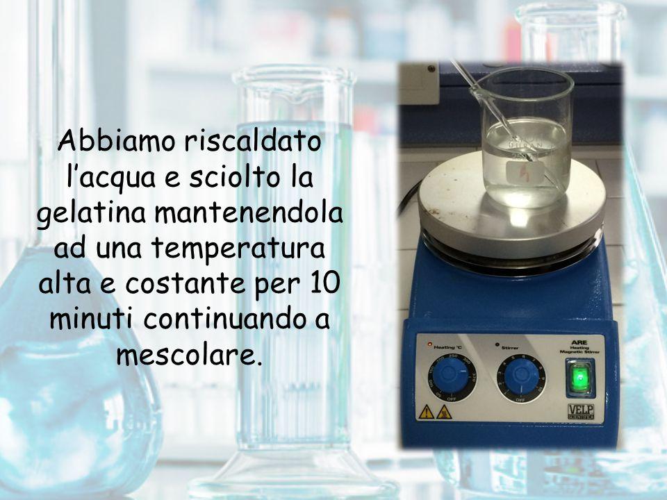 Abbiamo riscaldato l'acqua e sciolto la gelatina mantenendola ad una temperatura alta e costante per 10 minuti continuando a mescolare.