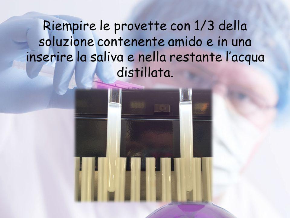 Riempire le provette con 1/3 della soluzione contenente amido e in una inserire la saliva e nella restante l'acqua distillata.