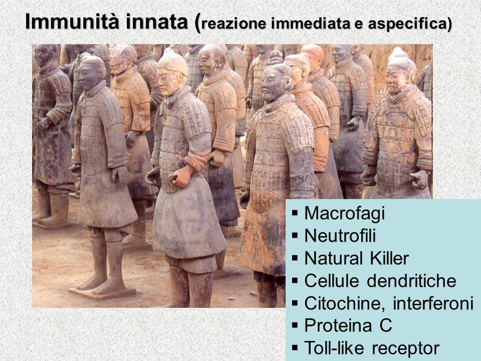 Immunità innata (reazione immediata e aspecifica)