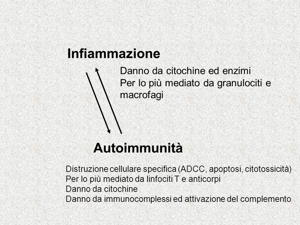 Infiammazione Autoimmunità Danno da citochine ed enzimi