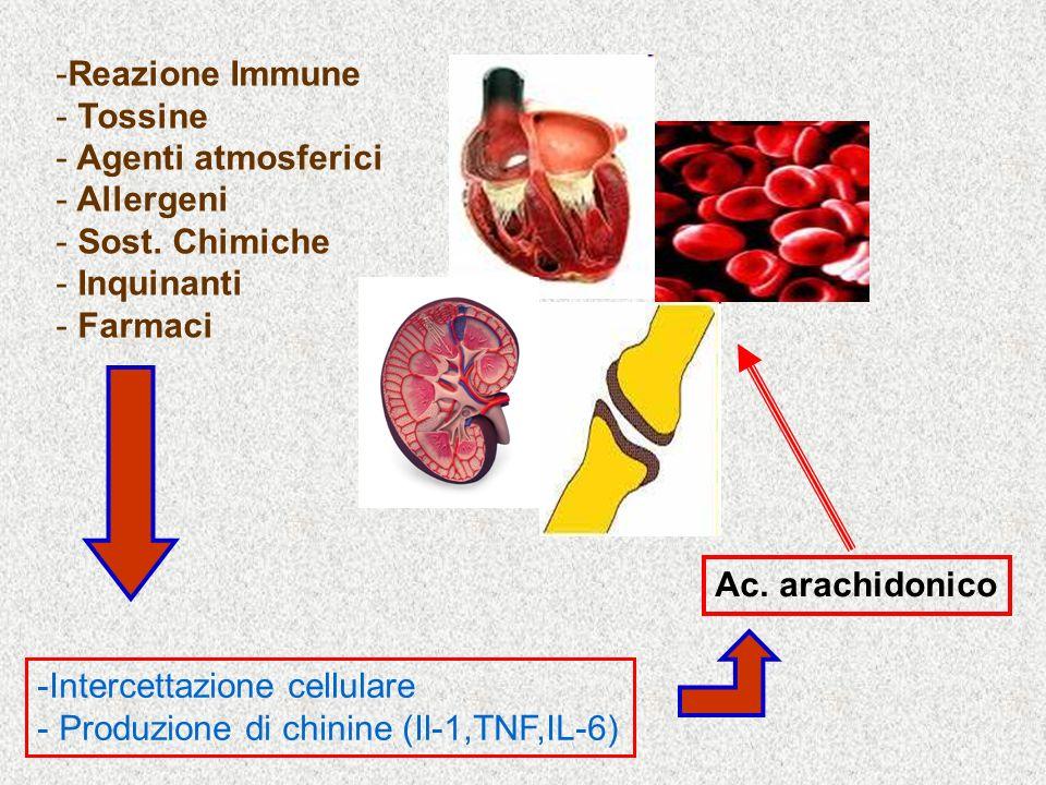 Reazione ImmuneTossine. Agenti atmosferici. Allergeni. Sost. Chimiche. Inquinanti. Farmaci. Ac. arachidonico.