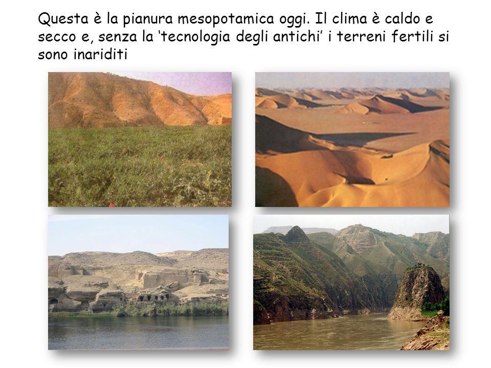 Questa è la pianura mesopotamica oggi