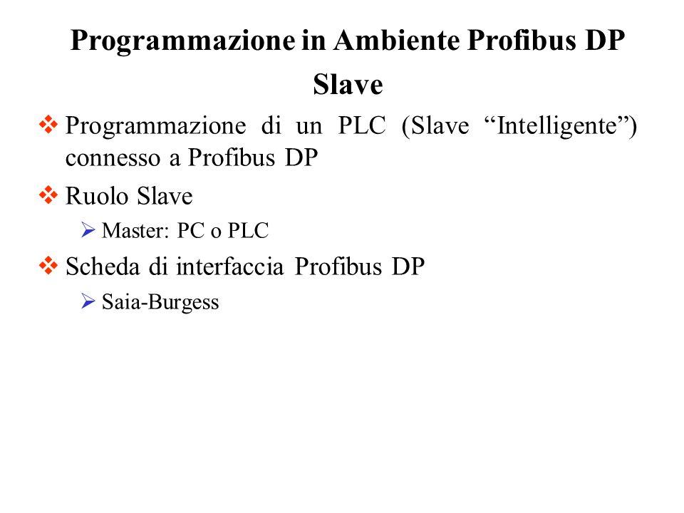 Programmazione in Ambiente Profibus DP