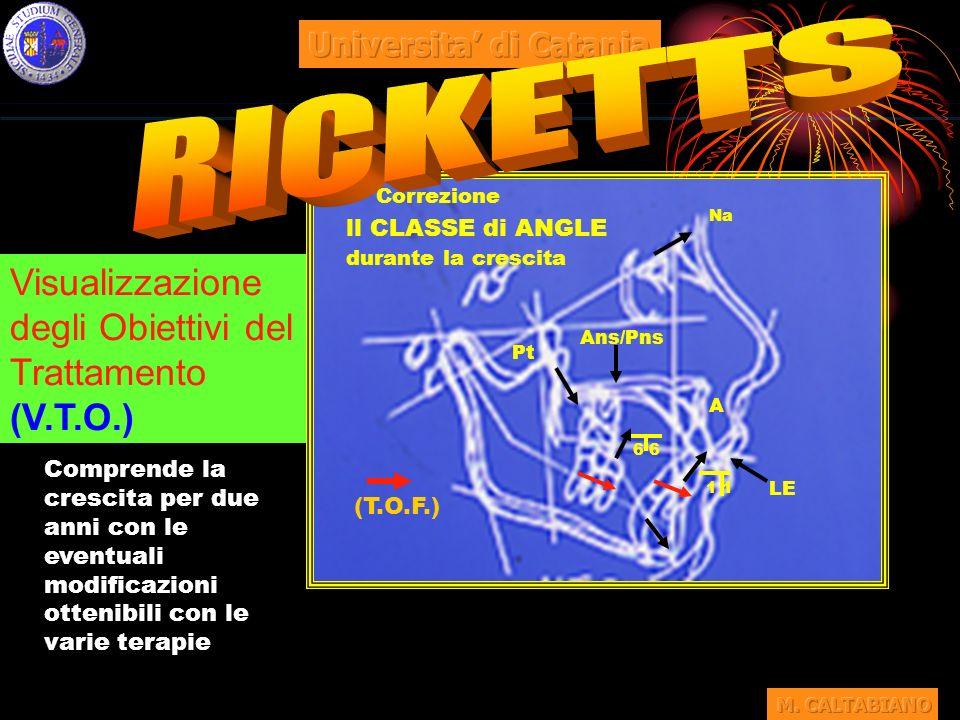 RICKETTS Visualizzazione degli Obiettivi del Trattamento (V.T.O.)