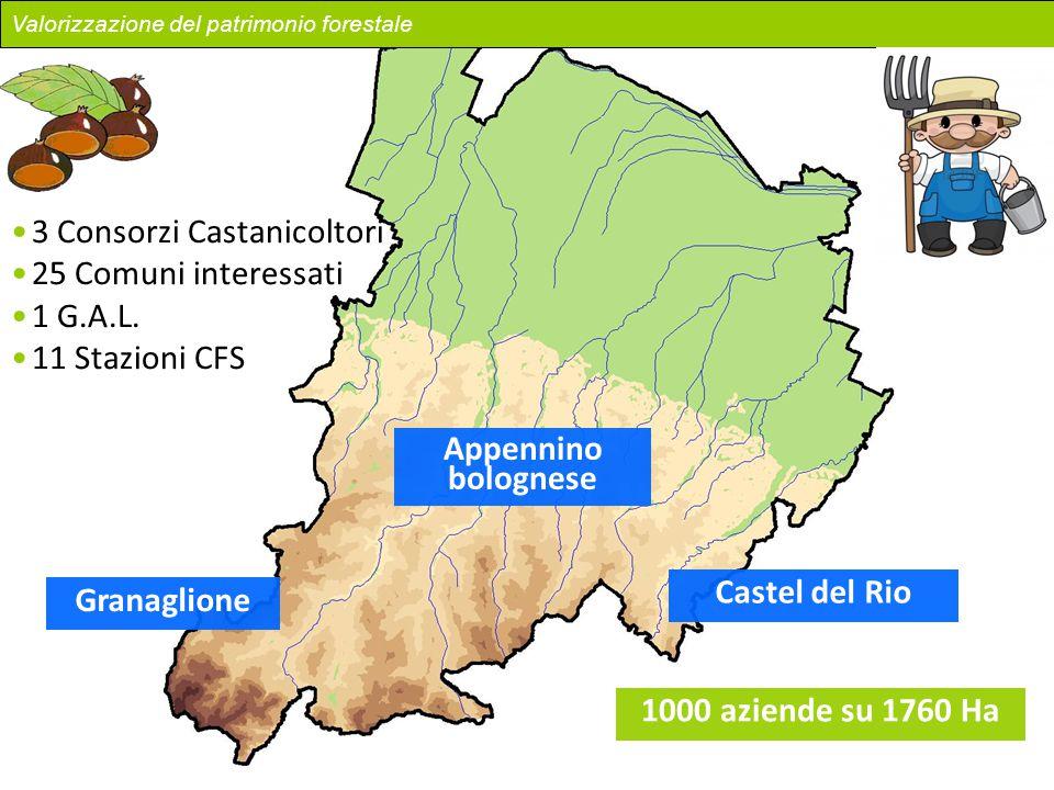 Appennino bolognese Castel del Rio Granaglione 1000 aziende su 1760 Ha