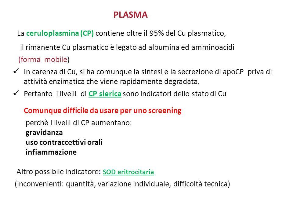 PLASMA La ceruloplasmina (CP) contiene oltre il 95% del Cu plasmatico, il rimanente Cu plasmatico è legato ad albumina ed amminoacidi