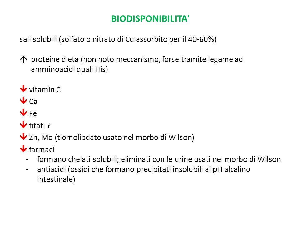 BIODISPONIBILITA sali solubili (solfato o nitrato di Cu assorbito per il 40-60%) proteine dieta (non noto meccanismo, forse tramite legame ad.