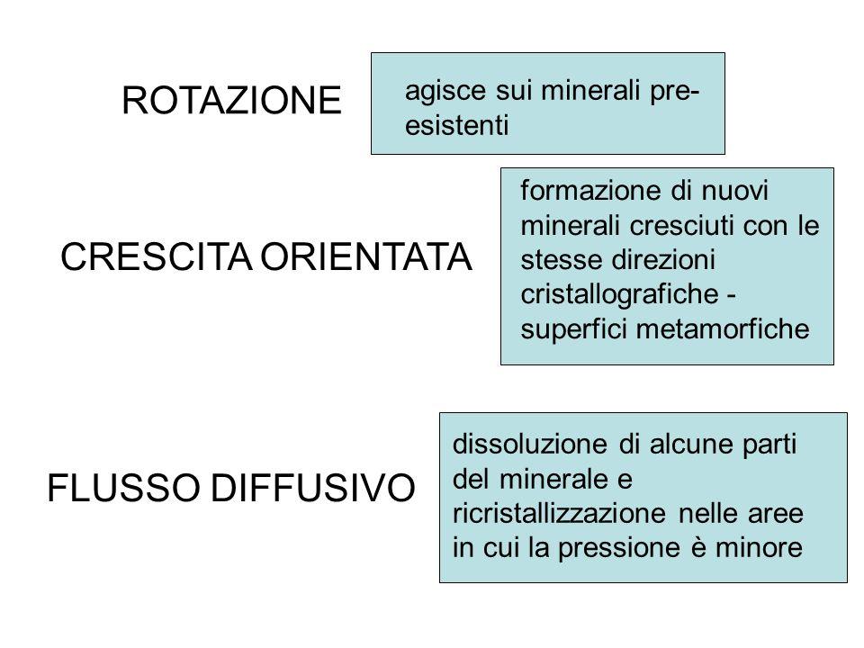 ROTAZIONE CRESCITA ORIENTATA FLUSSO DIFFUSIVO